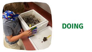 student vermicomposting