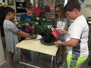 students caring for plants